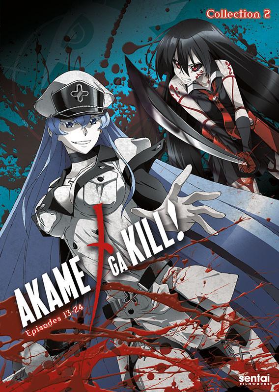 814131013385 anime akame ga kill 2 dvd primary